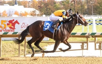 Laurel: Jaxon Traveler heads Juvenile Futurity noms