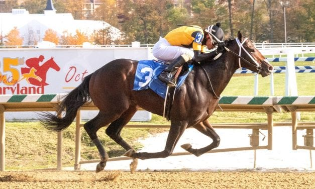 Unbeaten Jaxon Traveler heads Md. Futurity