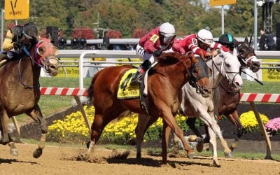 Laurel: 10 stakes winners collide in Whiteley