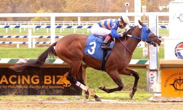 Laurel: Lugamo cruises to second straight win