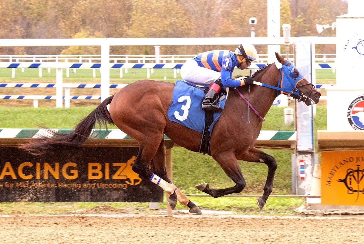 Laurel: Lugamo cruises to second straight win * The Racing Biz
