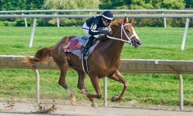 Maryland Million: Robb to saddle four