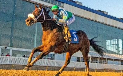 No Cents cashes in in James F. Lewis III Stakes