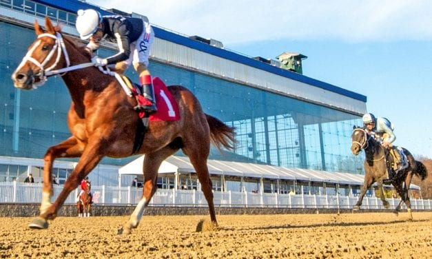 Noms announced for Laurel Park March stakes