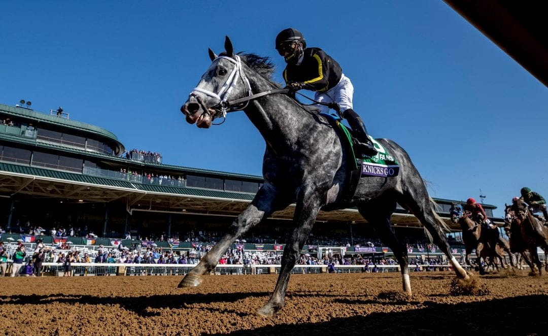 Breeders' Cup: Md-bred Knicks Go dominates Dirt Mile