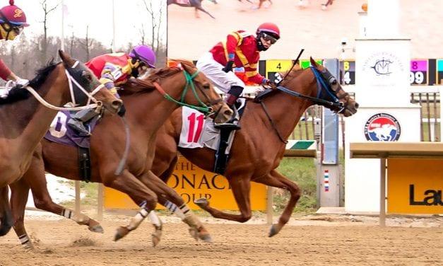Laurel: bug rider John Hiraldo gets first win