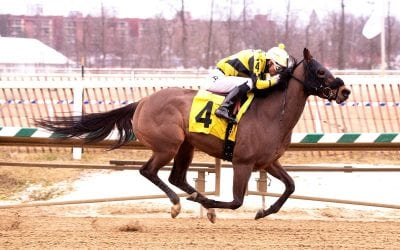 Madam Meena takes Laurel Friday feature
