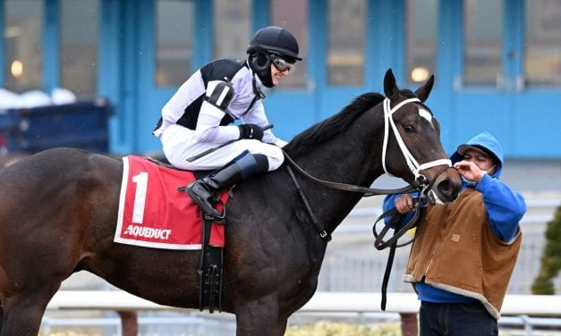 Hello Hot Rod to return home for Tesio Stakes