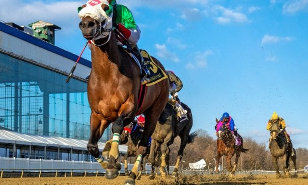 Share the Ride hitches to General George win