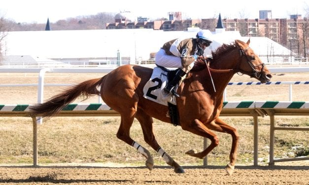 Cordmaker regains winning ways in Johnson