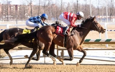 Exculpatory takes long road to winner's circle