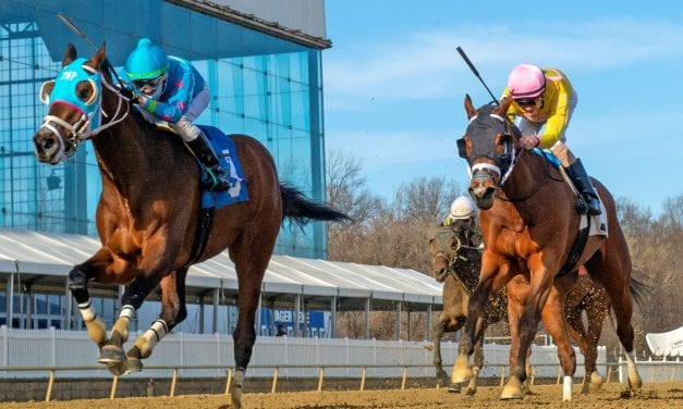 Locals hope to hold strong Tesio Stakes hand