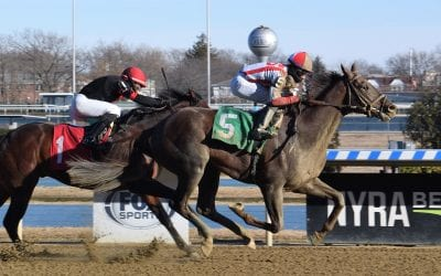 Crowded Trade pointed to Preakness