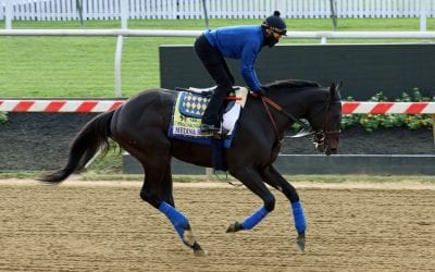 Preakness 2021 horse-by-horse analysis