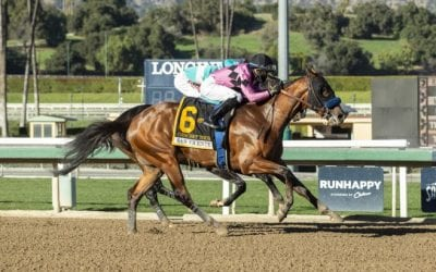 Concert Tour to contest Preakness
