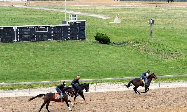 Timonium welcomes hundreds of Laurel horses