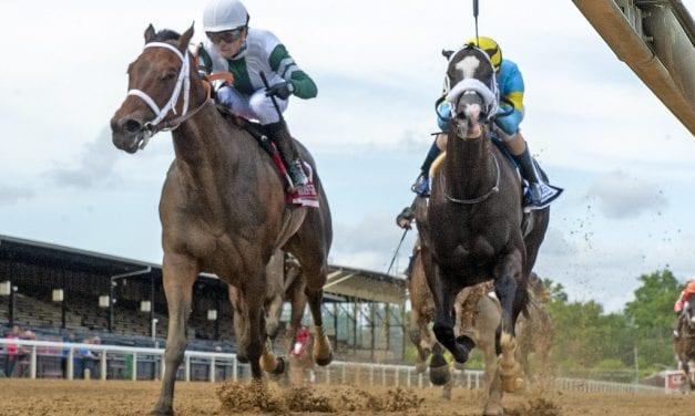 Chub Wagon wins Shine Again thriller