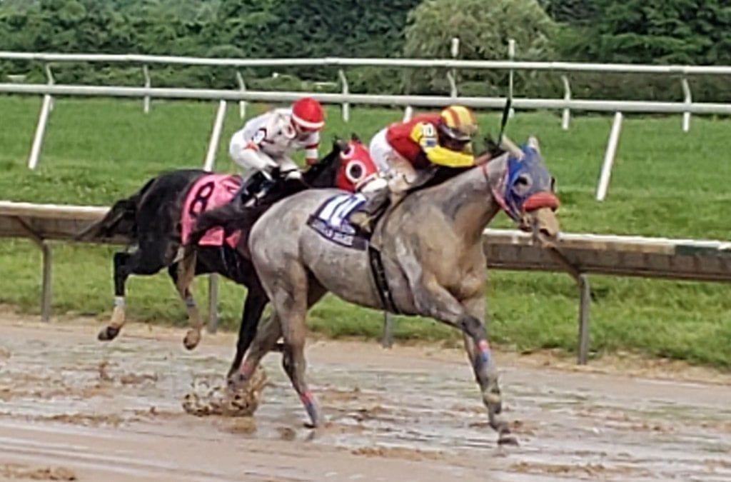 Joe Bravo tabbed Jockey of the Week