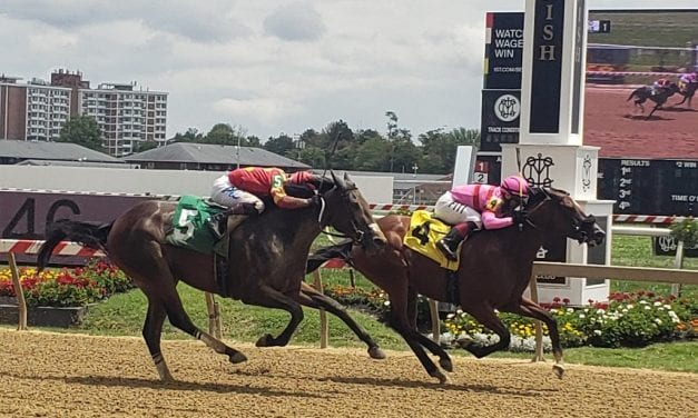 Well-attired She'sarollingstone a first-out winner