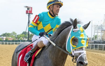 Field Pass up in time in G3 BWI Turf Cup
