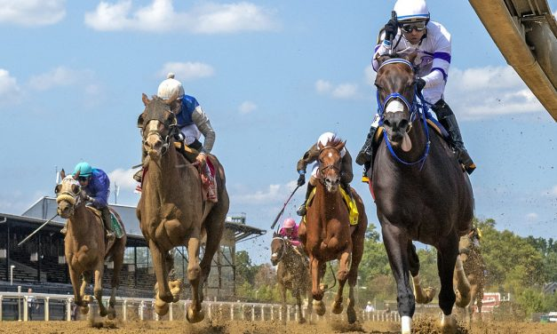 Harpers First Ride gets it done in Deputed Testamony