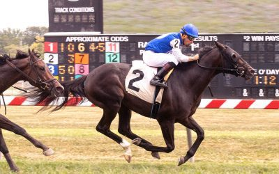 Ness has five for Delaware Owners' Day stakes