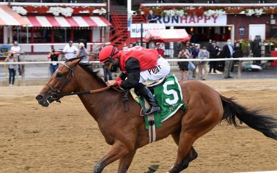 Bill Mott trio pointed to Colonial stakes
