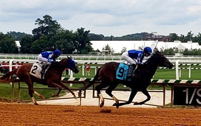 Laurel Park dirt course reopens for racing