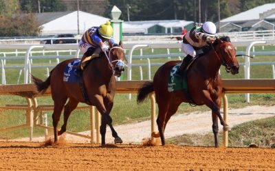 Md. Million: Buff My Boots polishes up Lassie win