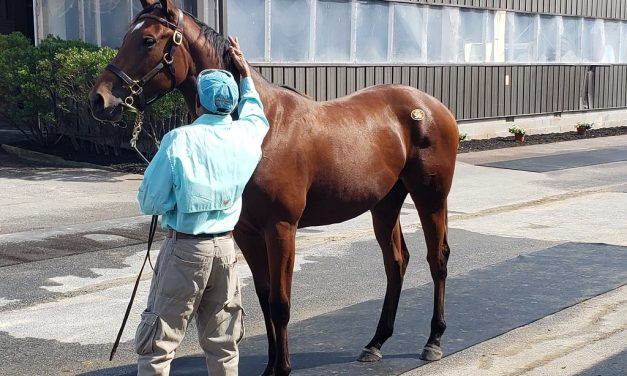 Fasig-Tipton: Strong opener as Md-breds star