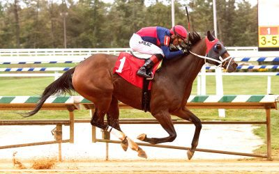 Moquist stakes bound after latest score