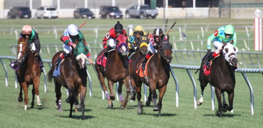 Laurel Park earns NTRA safety reaccreditation