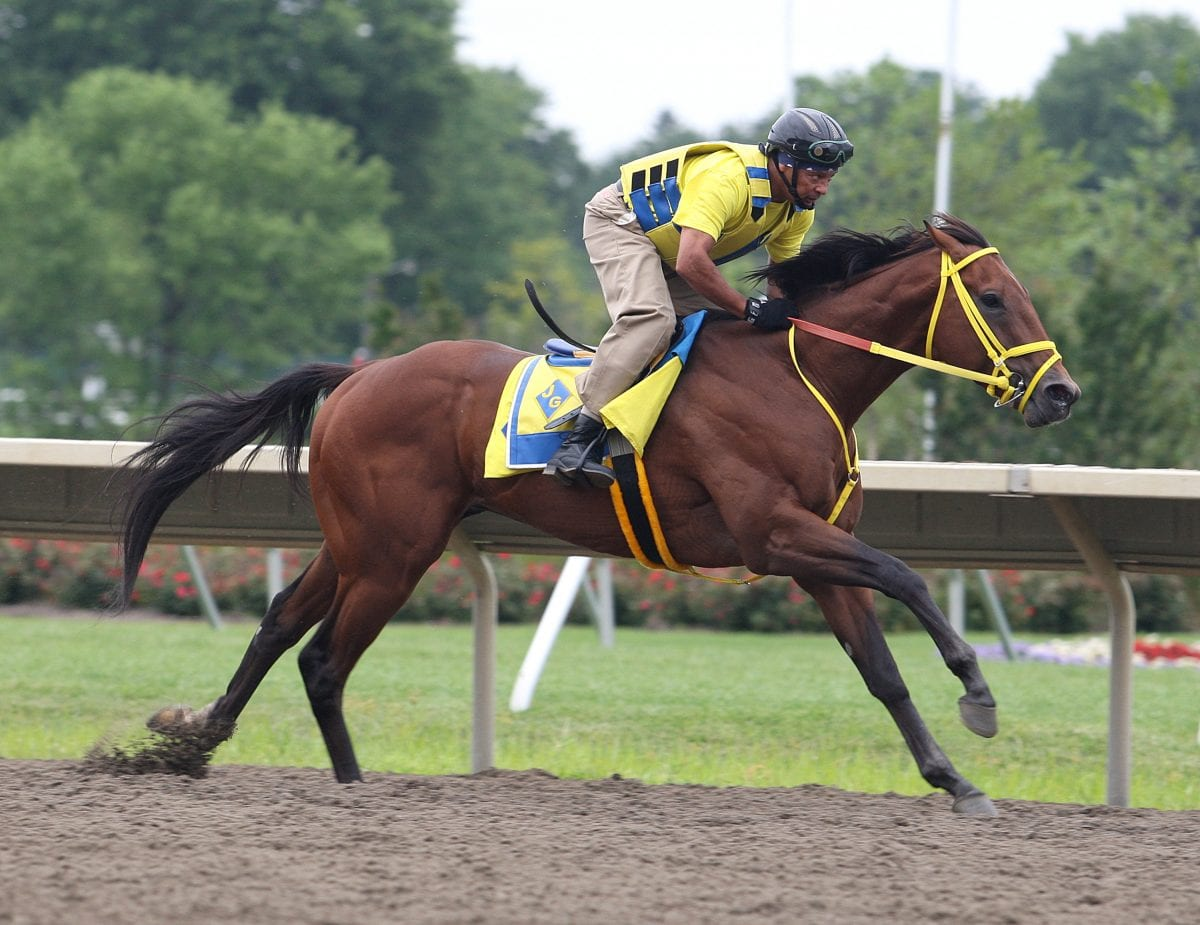 Untapable slated to arrive at Monmouth on Thursday