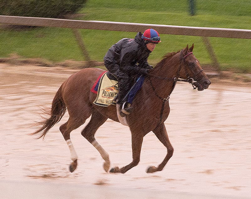 Preakness notes for May 16: Ready