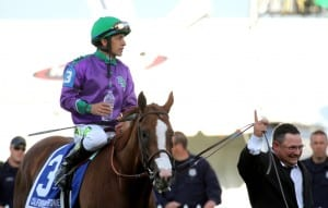 Assistant trainer Alan Sherman knows that California Chrome is number one. Photo by Laurie Asseo.