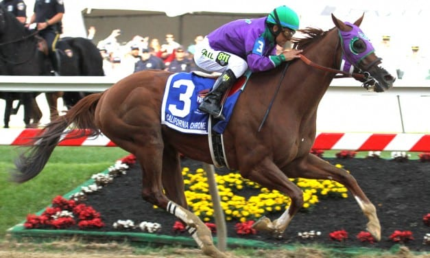 California Chrome tops new NTRA Top Thoroughbred Poll