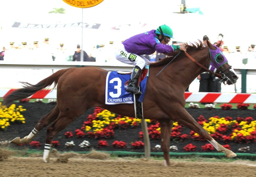 Handicappers' Belmont Stakes selections