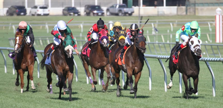 Midlantic RaceDay: November 14